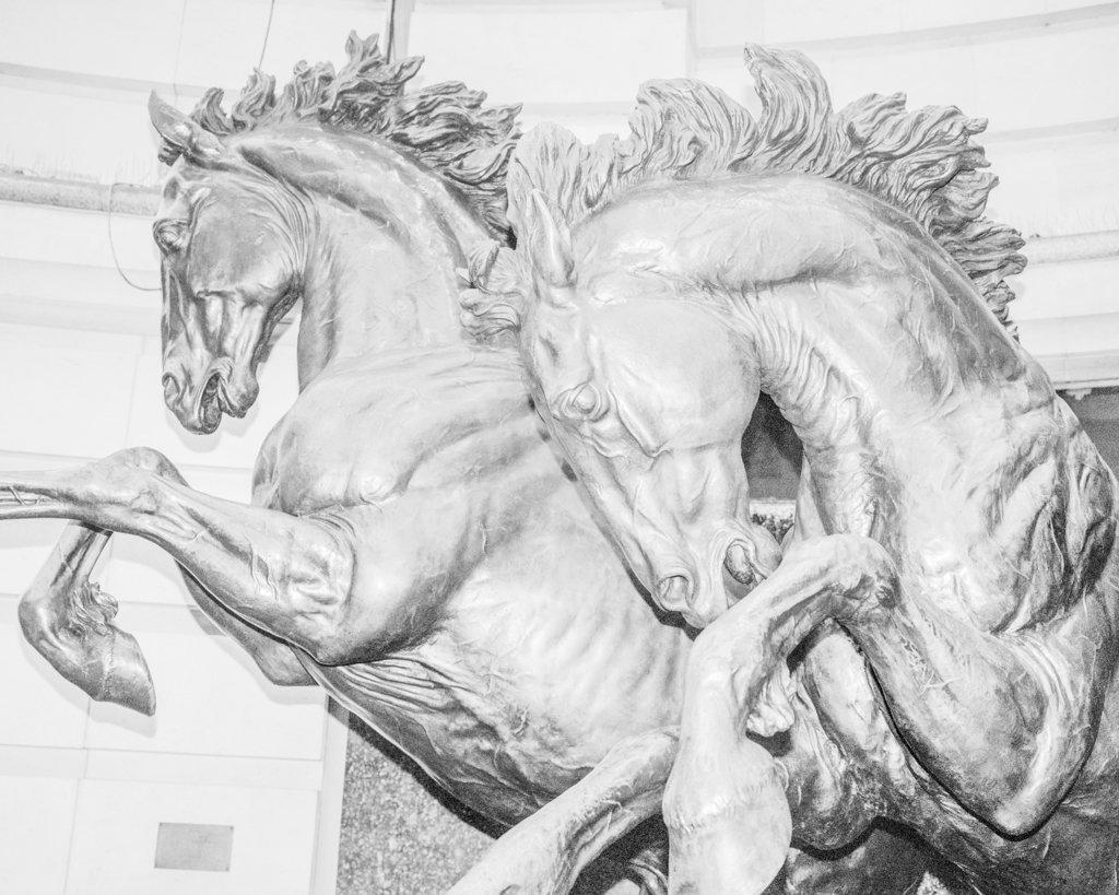White Horses, 2017, Archival Pigment Print, 50 x 40 cm, Unique Piece