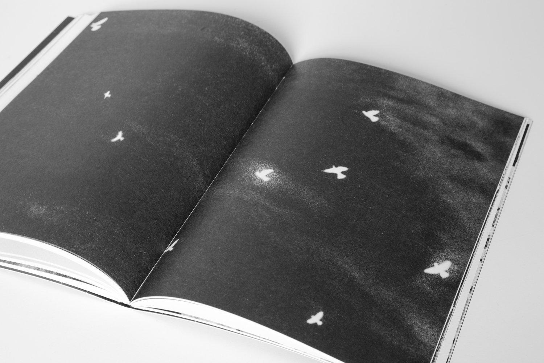 ¡Pírate!_Book_2017-7.jpg