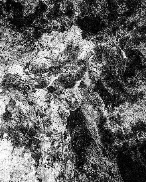 Ash, 2019, Archival Pigment Print, 42 x 34 cm, Ed. 3 + 2AP
