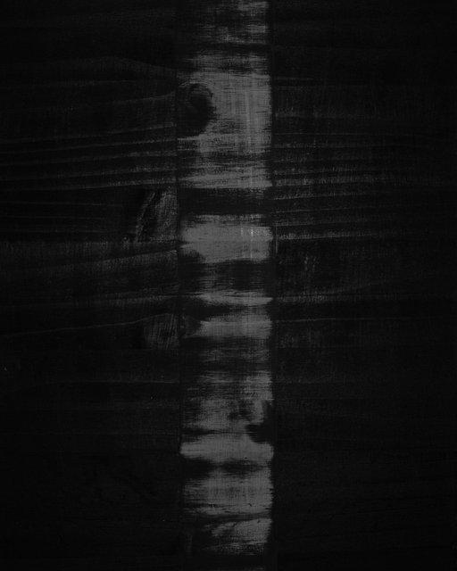 Tree 02, 2020, Archival Pigment Print, 9 x 7,2 cm, Ed.1 + 1AP