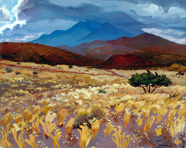 "East of Flagstaff, AZ, 24 x 30"" sold"
