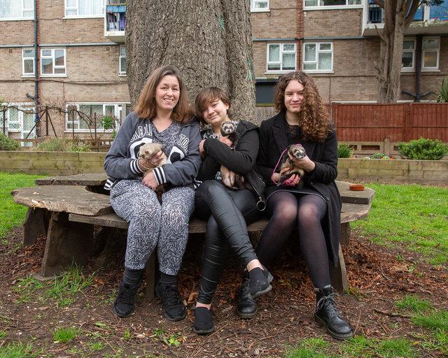 Lynn, Yasmin and Amira. Ferrets: Bailey, Yogi & Cindy.