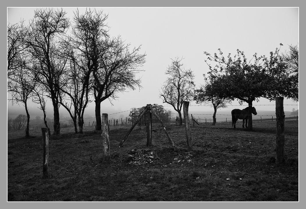 Craonne, Aisne. Chemin des Dames