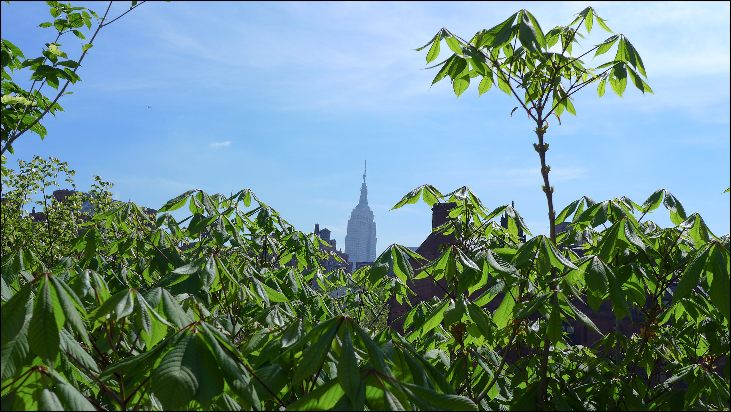 The Empire State building, 2013