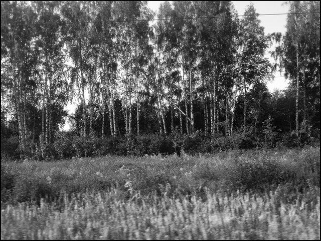 Russie_2016-1660.jpg