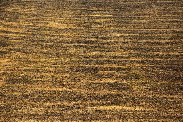Terra Galicia_(Yurko Dyachyshyn)_29.jpg