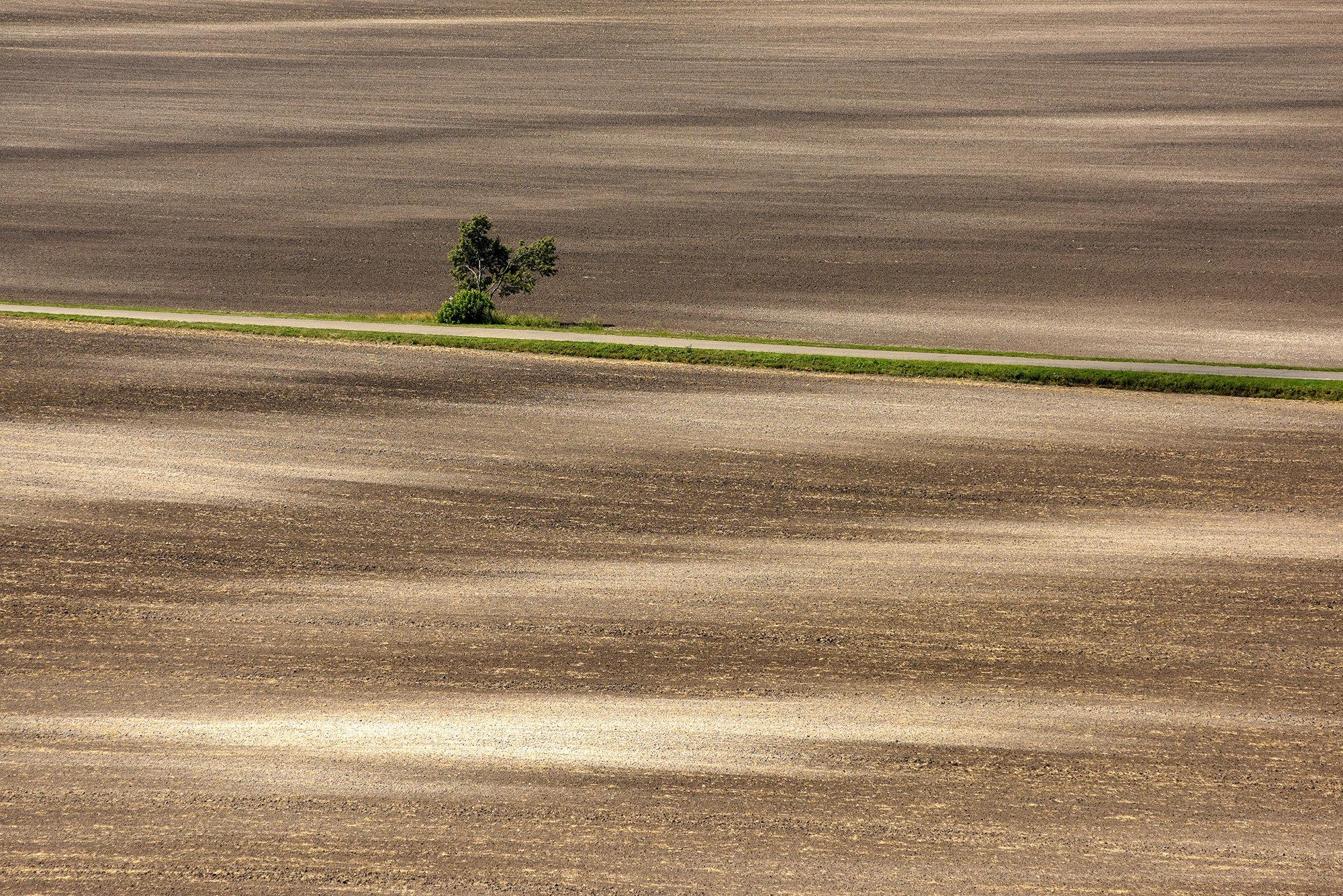 Terra Galicia_(Yurko Dyachyshyn)_28.jpg