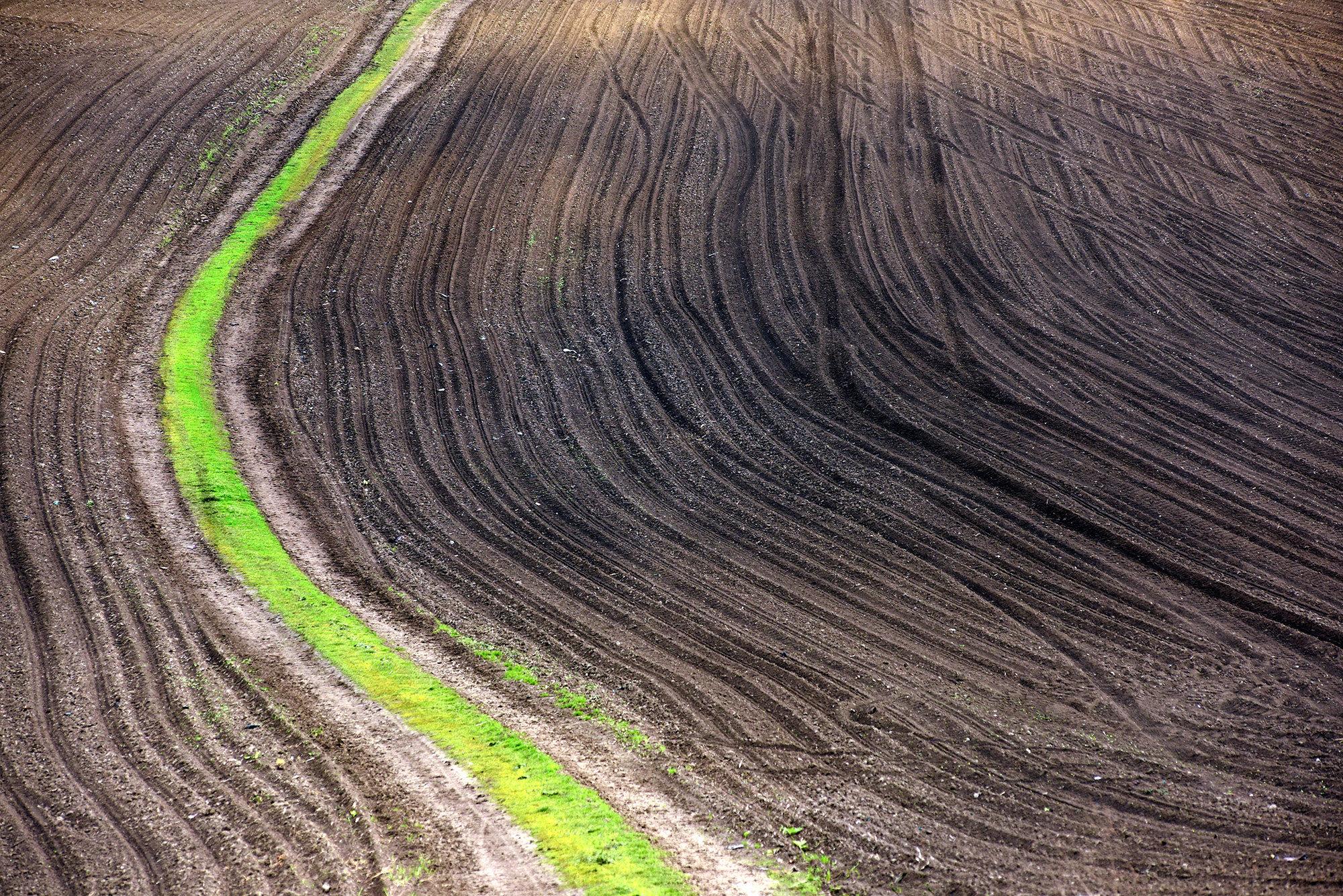 Terra Galicia_(Yurko Dyachyshyn)_13.jpg