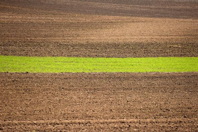 Terra Galicia_(Yurko Dyachyshyn)_01.jpg