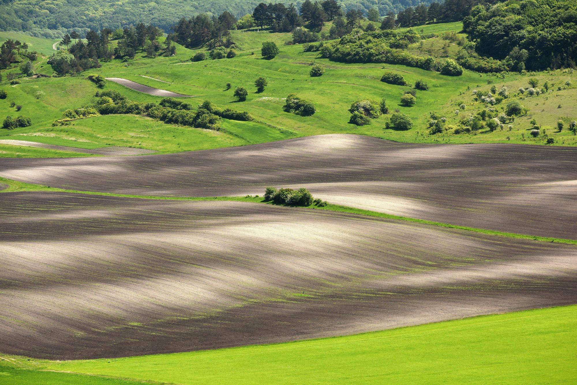 Terra Galicia_(Yurko Dyachyshyn)_14.jpg