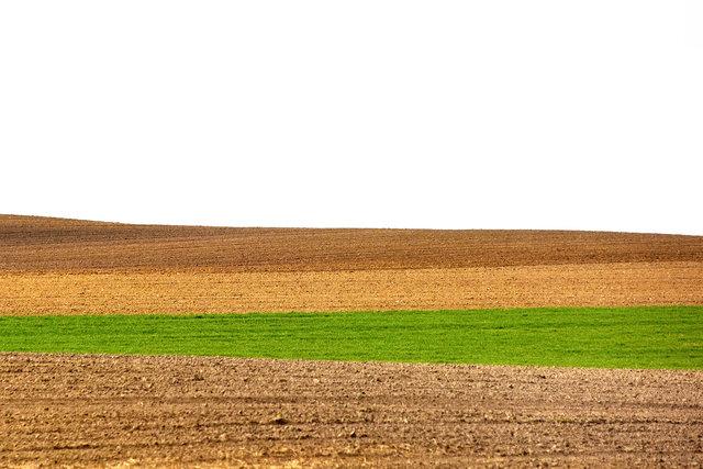 Terra Galicia_(Yurko Dyachyshyn)_08.jpg