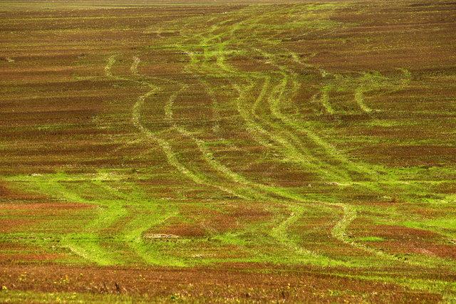 Terra Galicia_(Yurko Dyachyshyn)_38.jpg