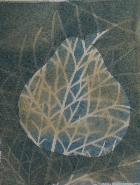 päron2.jpg