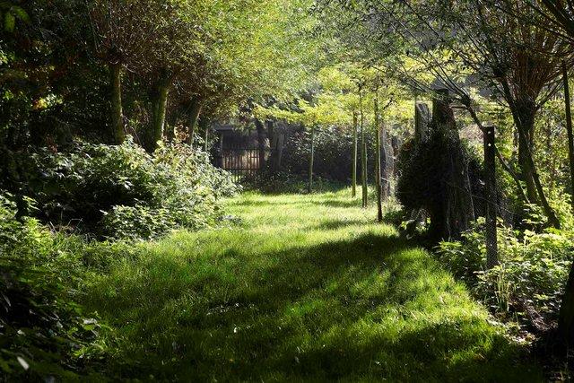 Jardin Lansau 56 7-120-2246P.jpg