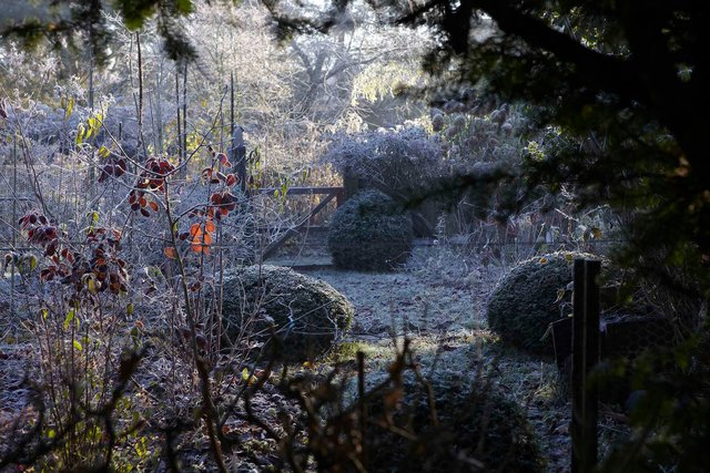 jardin lansau 11 1-96-2244P.jpg