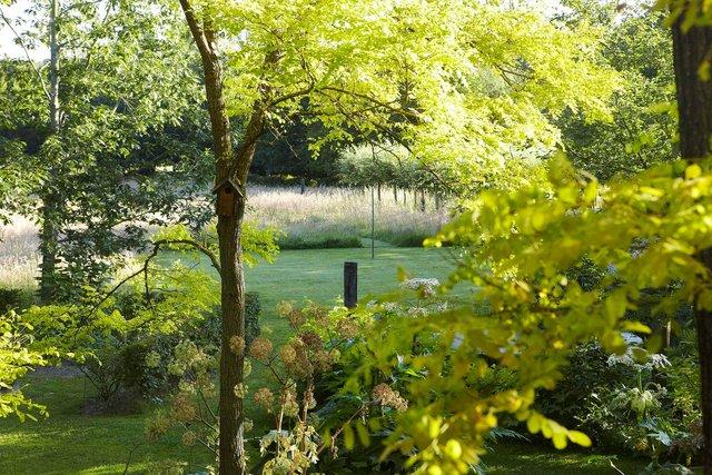 Frisia vue haute_MG_0178-96-2244P.jpg