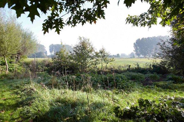 Jardin Lansau 43-96-2244P.jpg