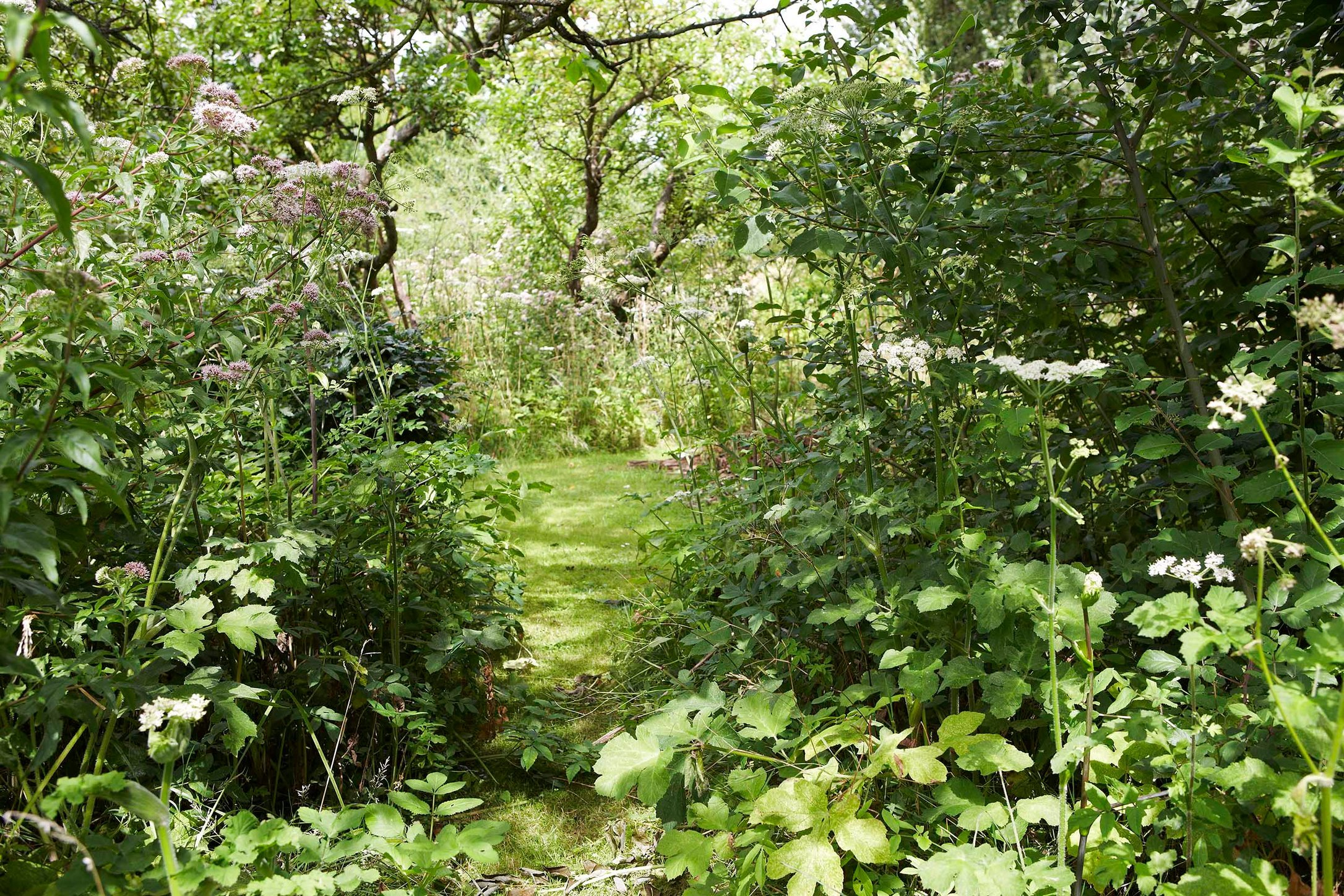 VIEWBOOK_Jardin gilles- 34.jpg