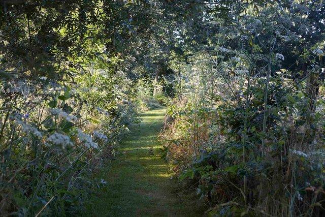 Jardin lansau chemin1306-96-2244P.jpg