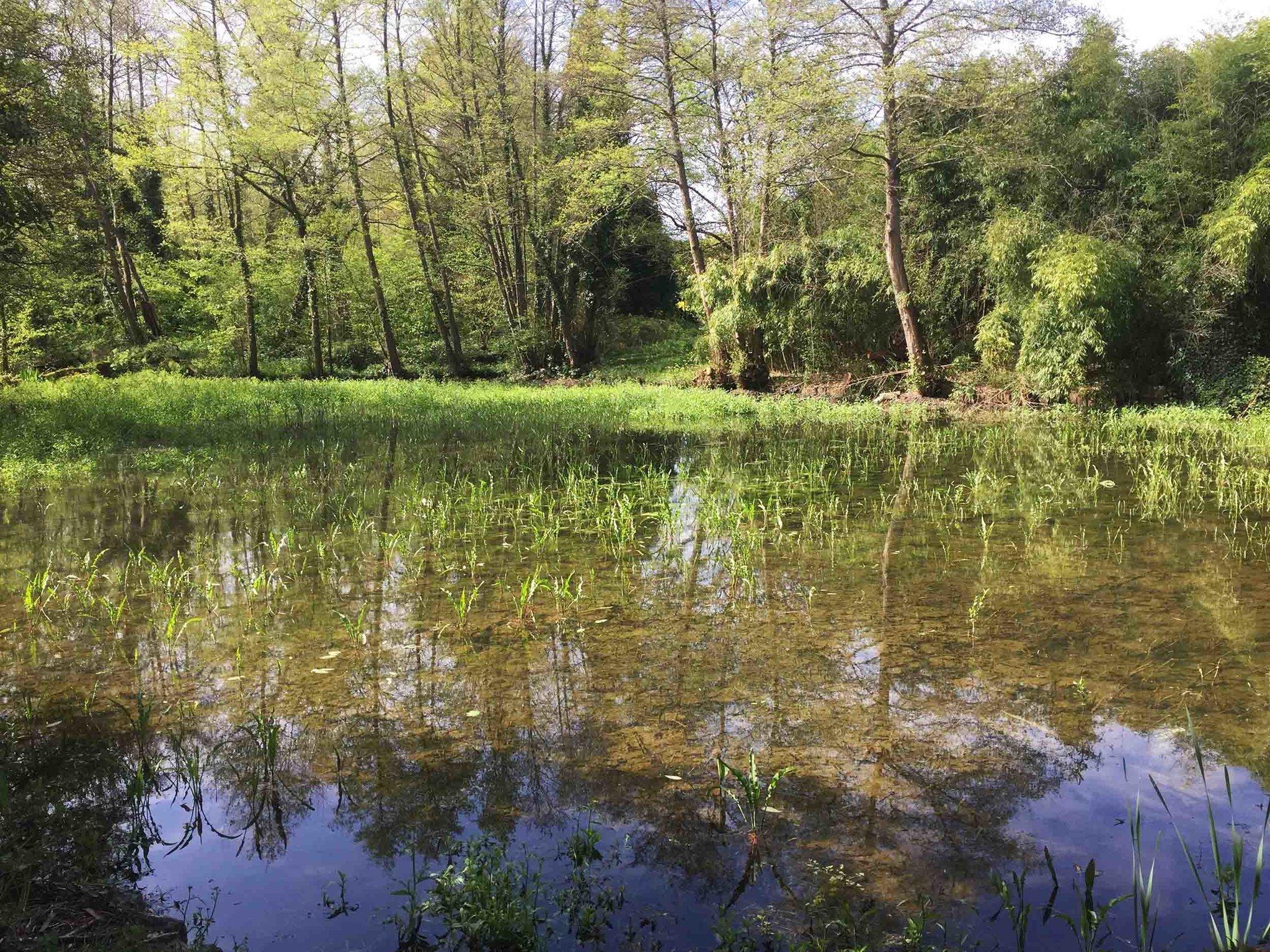 03-Marais terre eau-IMG_8540.jpg