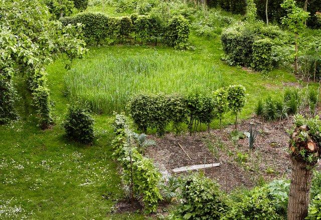 17-Jardin Saussier 12.jpg