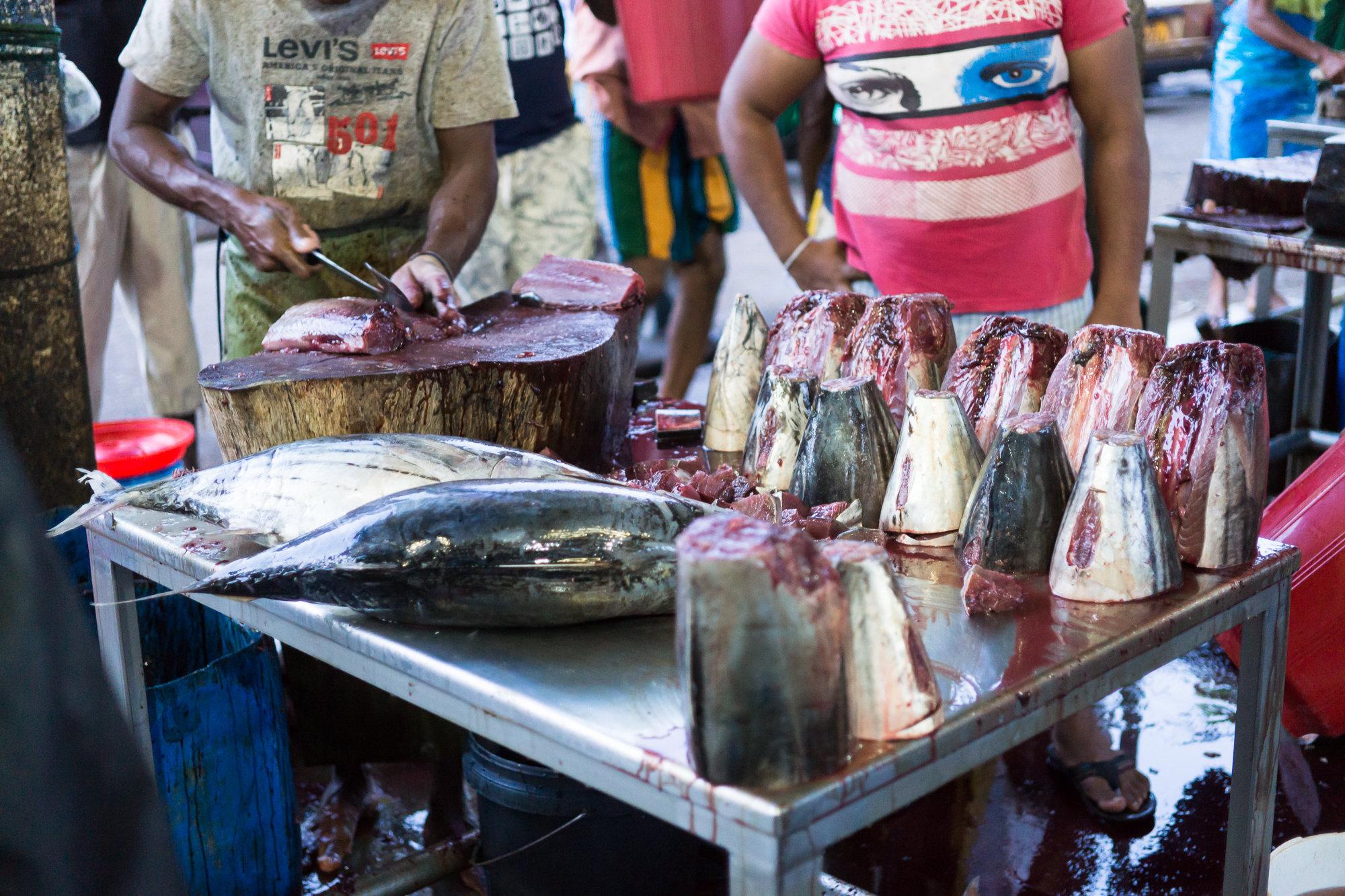 Fishmarket in Beruwala, SriLanka