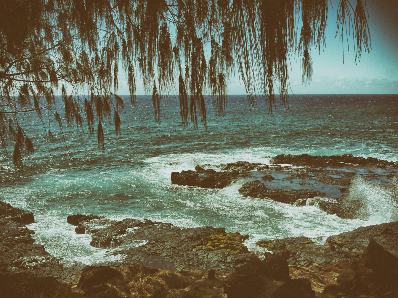 M R_Hawaii_32.jpg