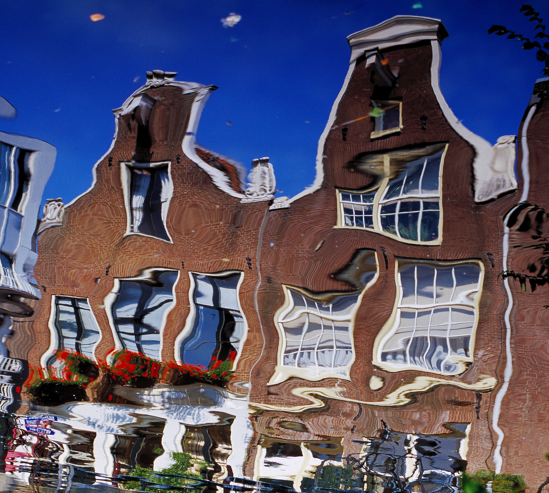 Gables_amsterdam©oliviarutherford-.jpg