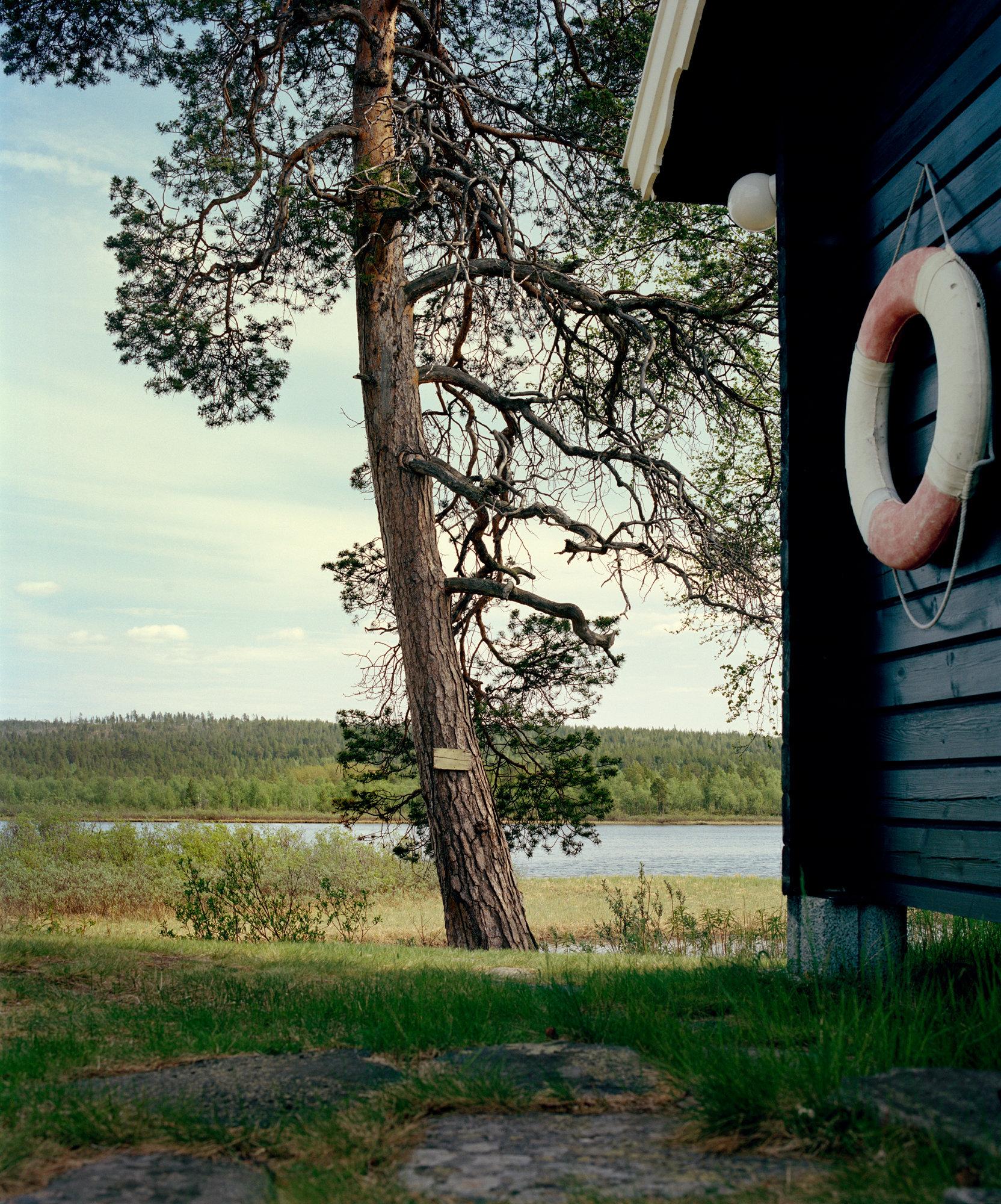 Jeroen Toirkens, Norway 1, 2016.jpg