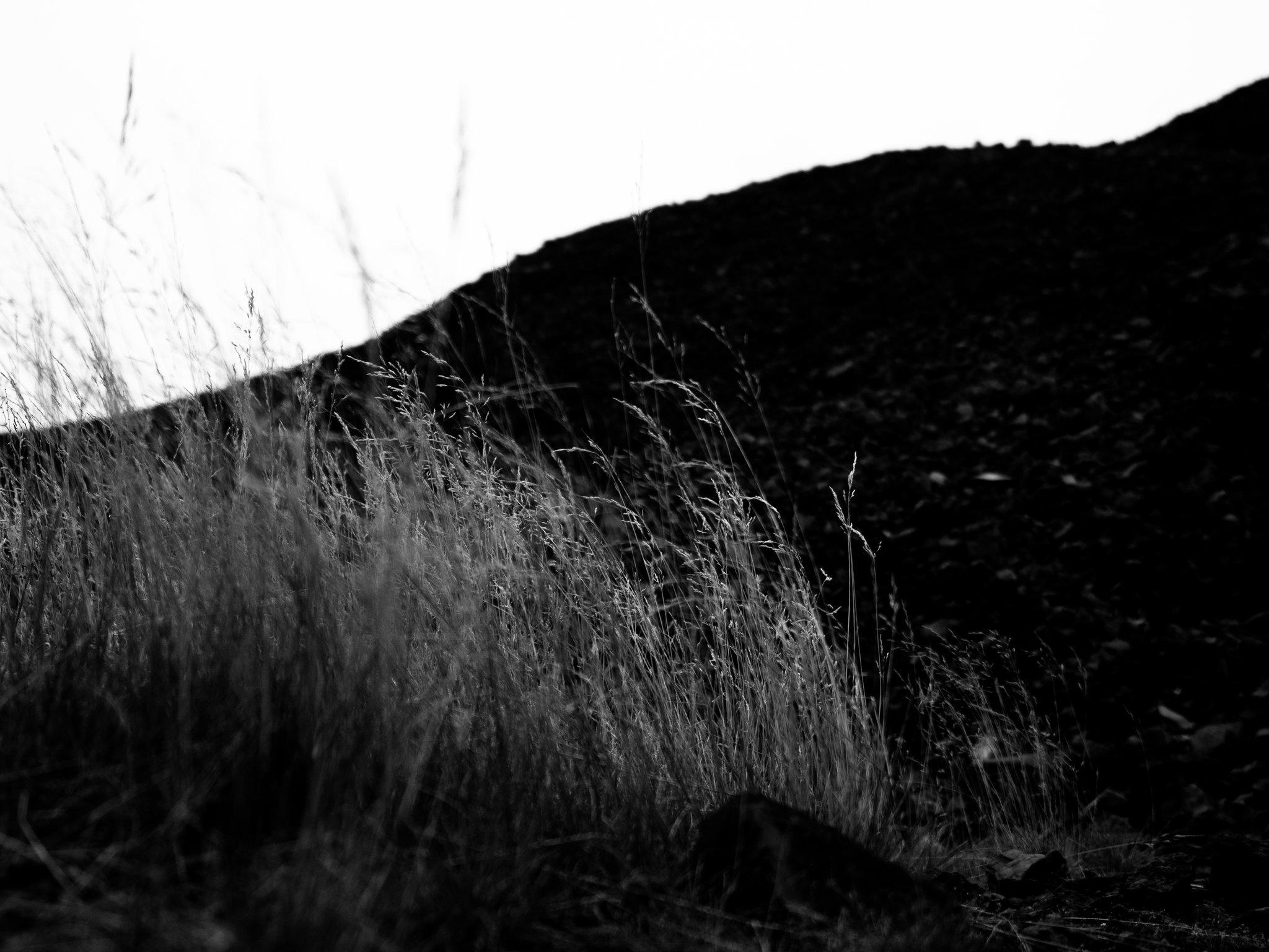 abstrakt-5.jpg