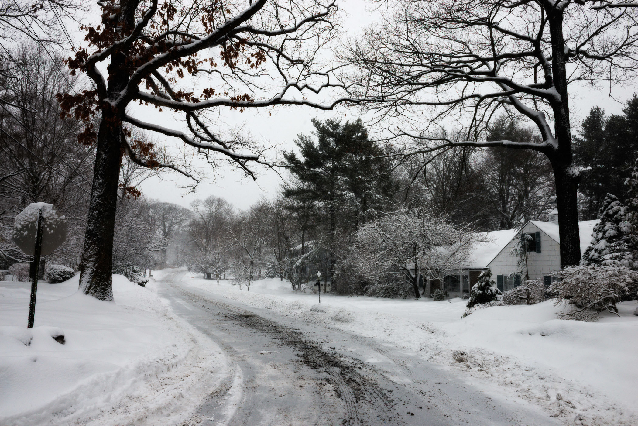 snowystreet.jpg