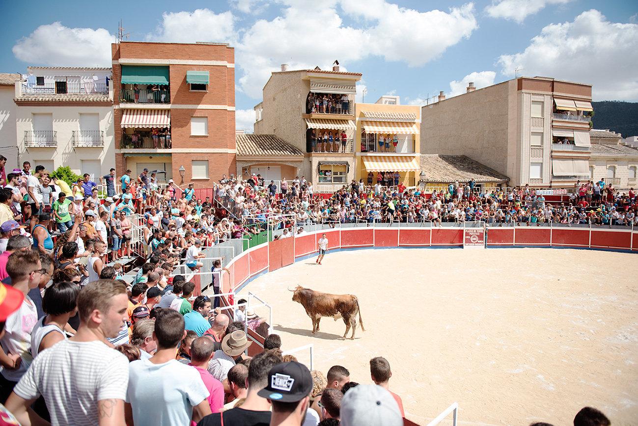Bullfight Blanca, Spain