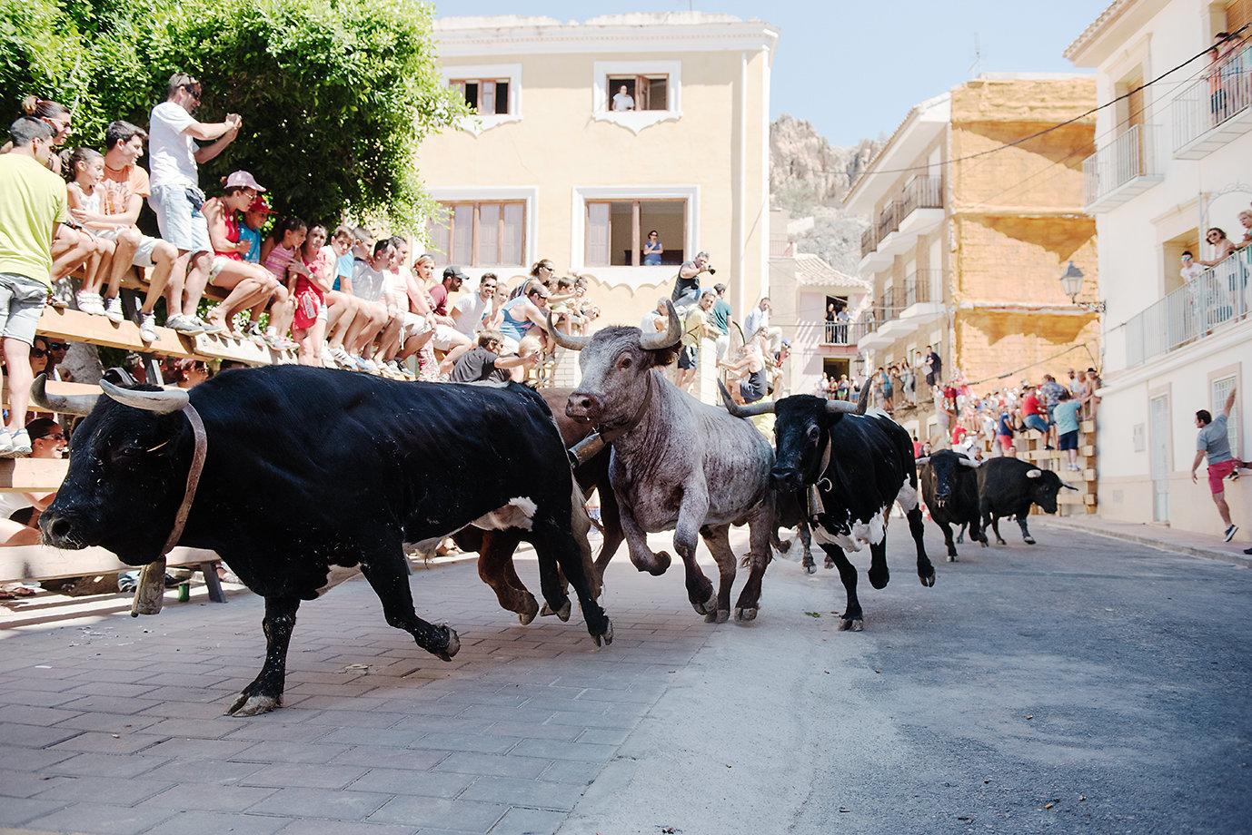 Bull Run.jpg