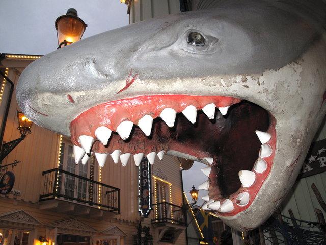Die Zähne als erster Schritt im Verdauungsprozess ✓