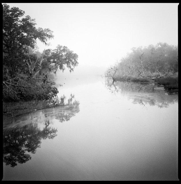 White Bridge Swamp Field Drain Creek, High Tide, 2016