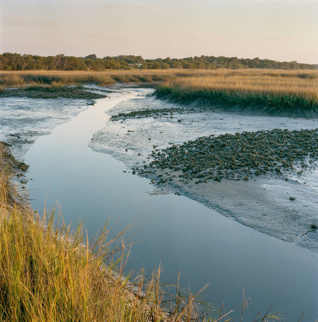 Tidal Creek through Salt Marsh in Winter, Dungeness, 2016