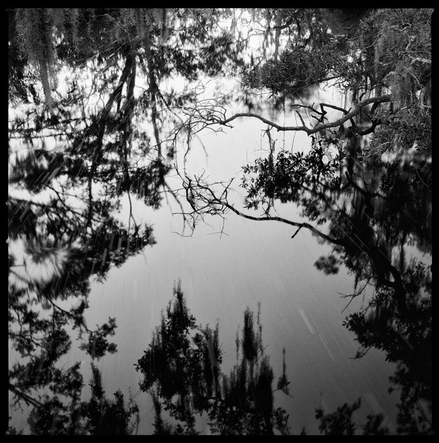 White Bridge Swamp Field Drain Creek, 2018