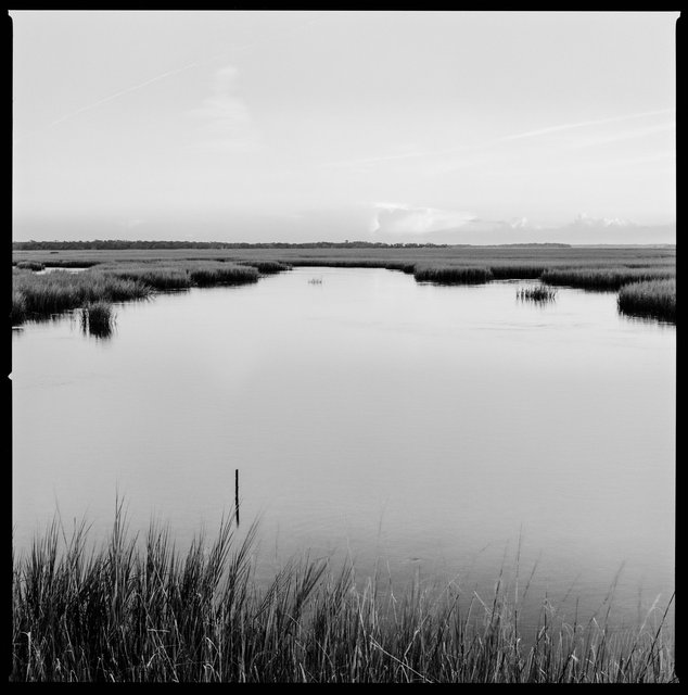 Marsh and Oyster Beds at High Tide, South End, 2018