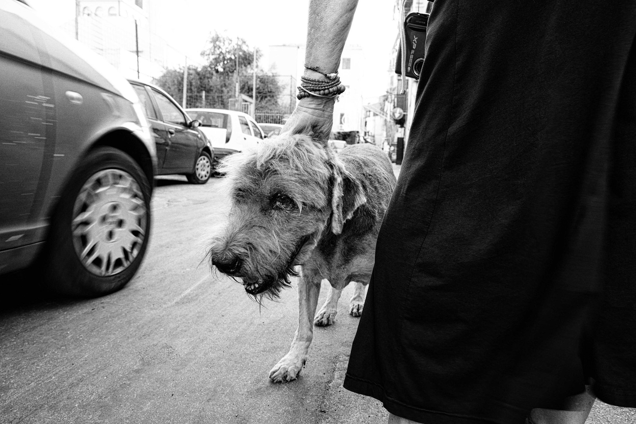 myownlens_streetphotography_palermo__chimenti_15.jpg