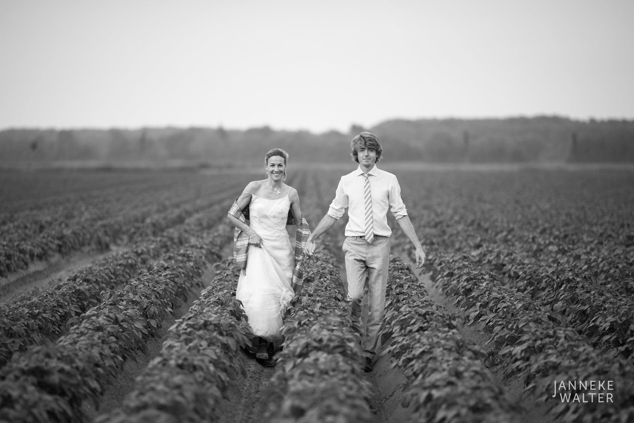Portretfoto bruidspaar in aardappelveld © Janneke Walter, fotograaf Utrecht De Bilt, loveshoot, bruidsfotografie, trouwfotografie