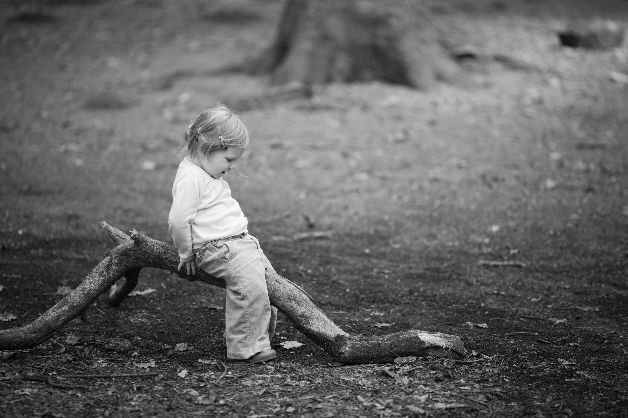 Portretfoto kind op boomstam - © Janneke Walter, kinderfotograaf omgeving Utrecht