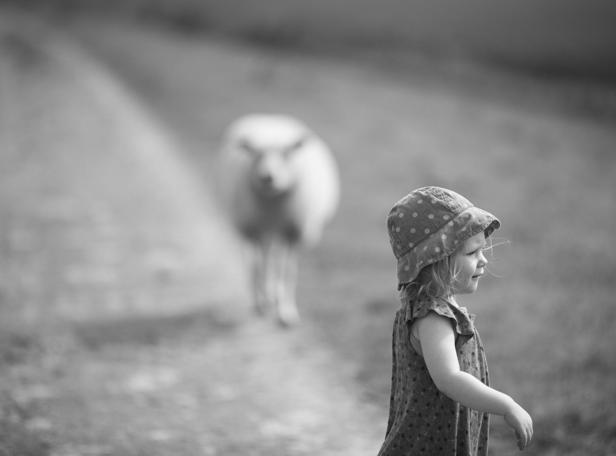 Portretfoto kind op weg met schaap - © Janneke Walter, kinderfotograaf omgeving Utrecht