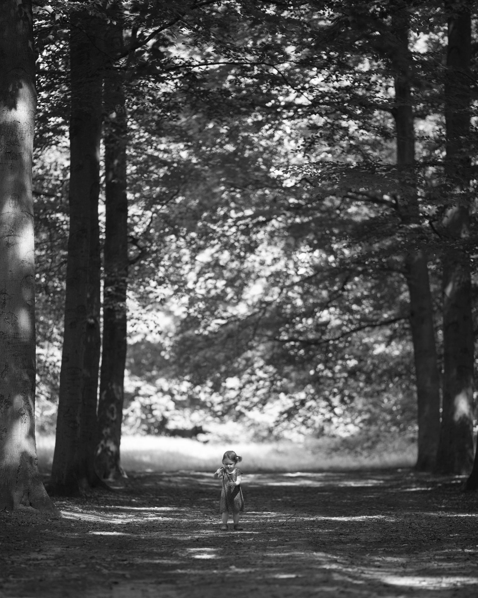 Portretfoto kind in boslaan - © Janneke Walter, kinderfotograaf omgeving Utrecht
