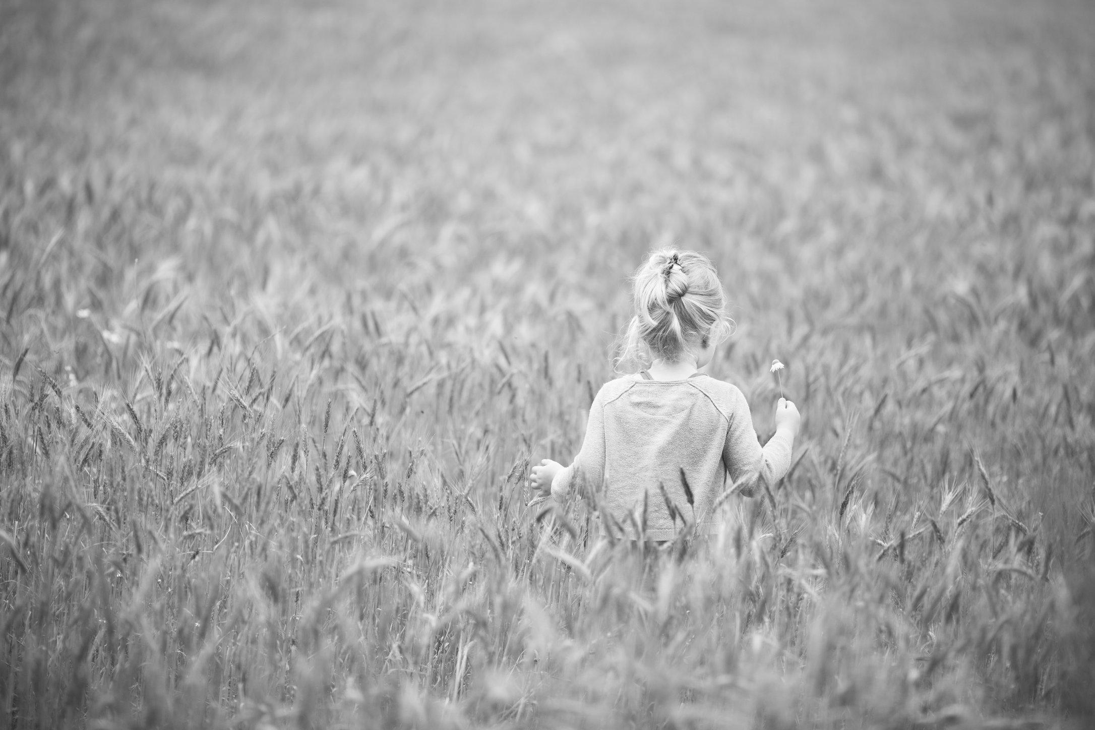 Portretfoto kind in graanveld