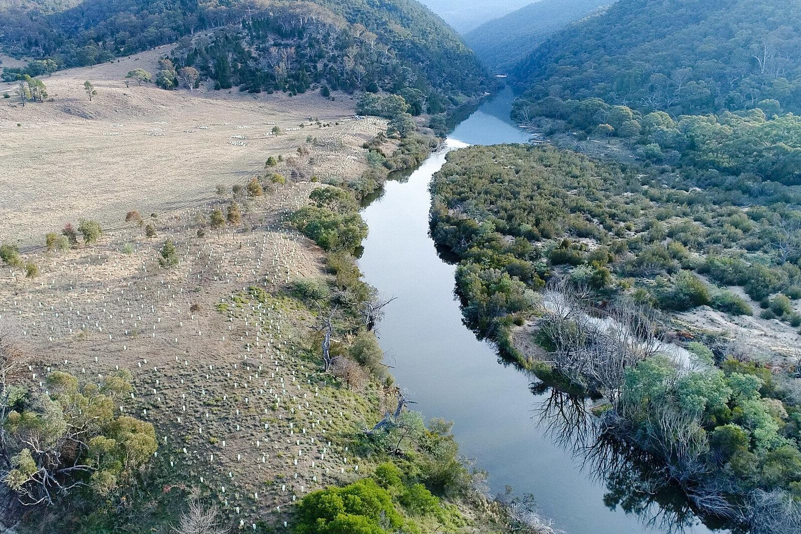 Scottsdale River Restoration © Annette Ruzicka 14.JPG