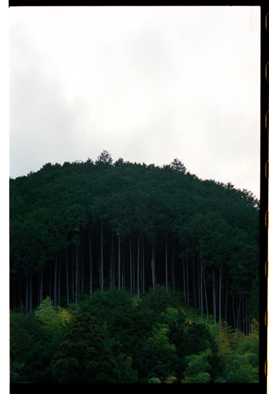 160404_Japan_310.jpg