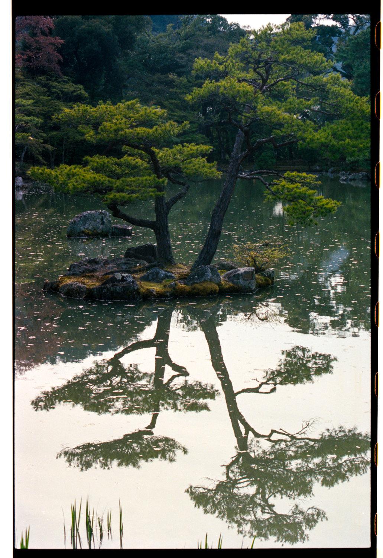160404_Japan_314.jpg