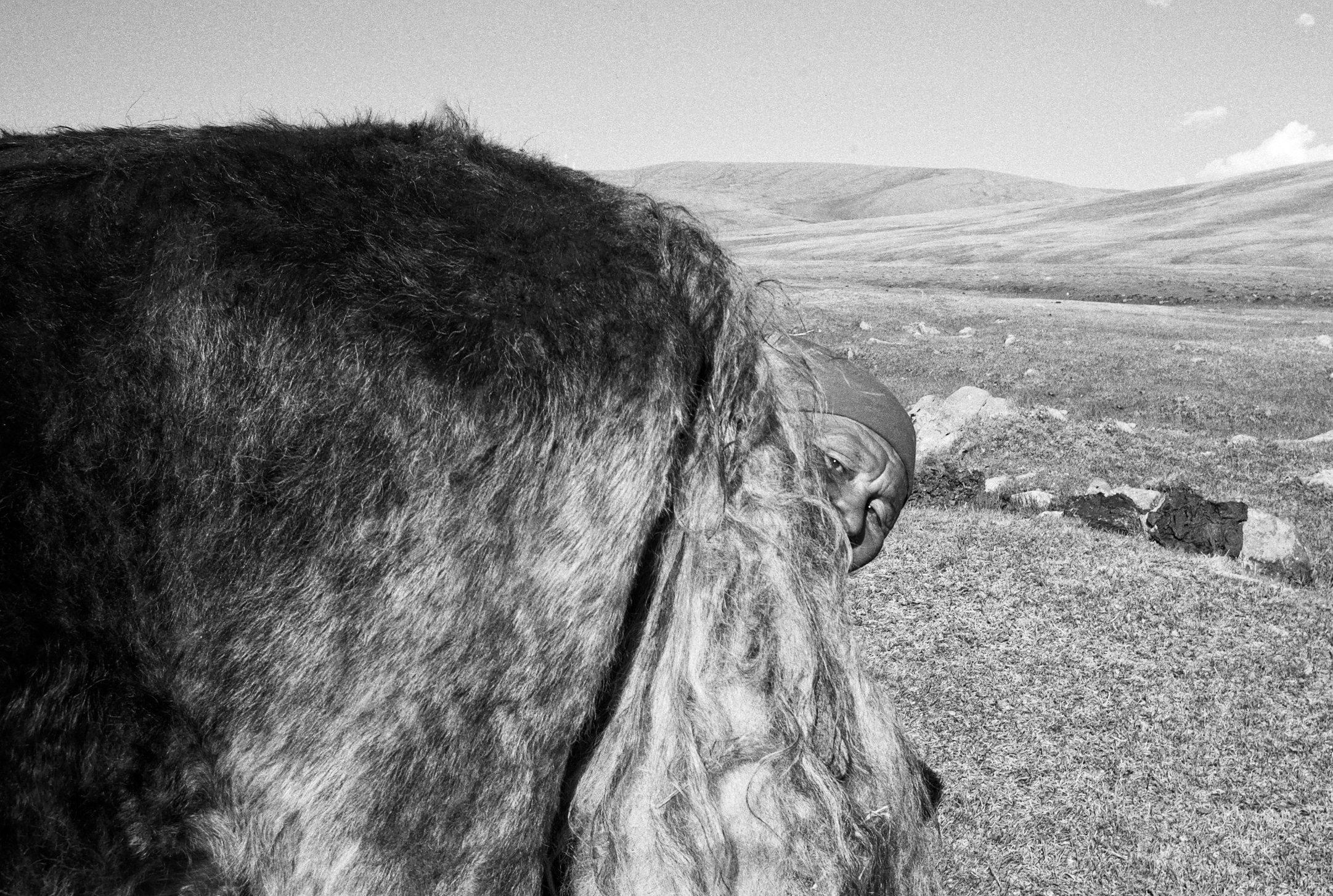 Khuk Khutel, Mongolia, 2009