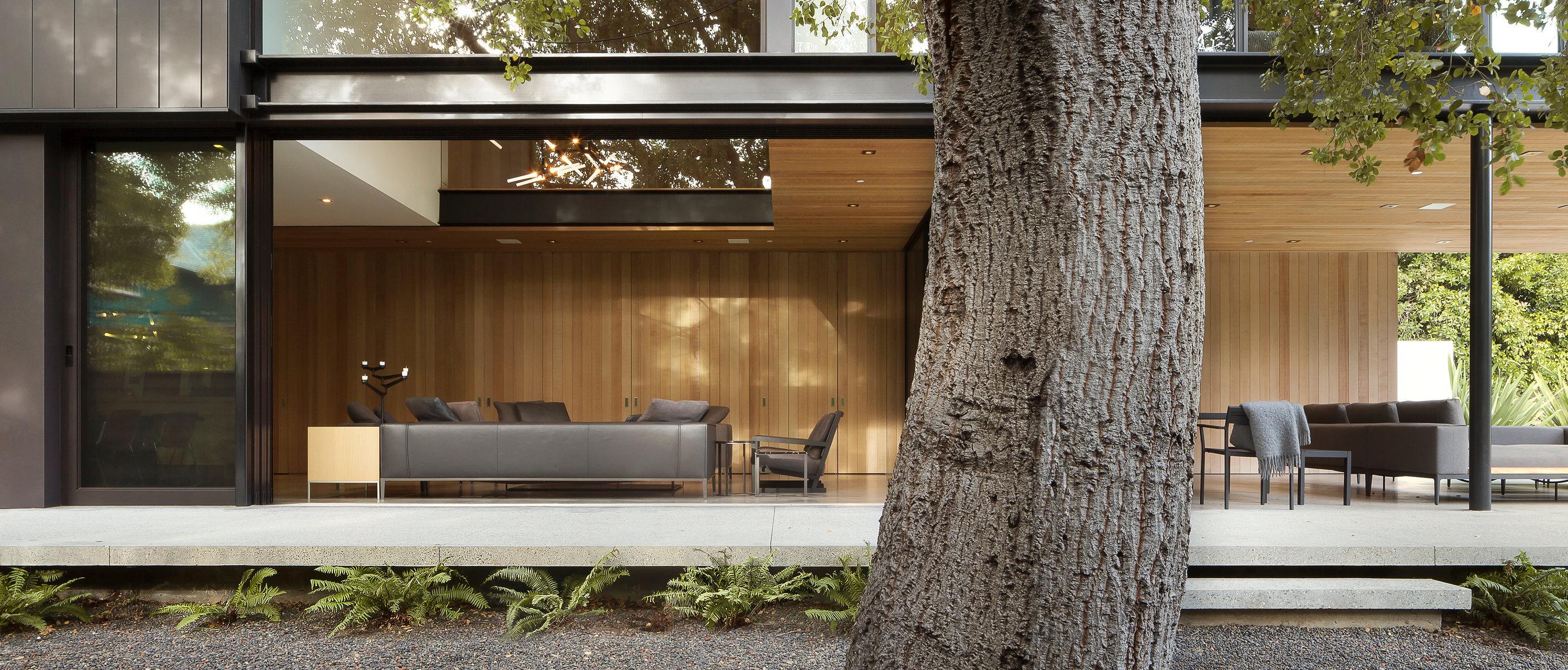 1002-Treehouse-AR-9777.jpg
