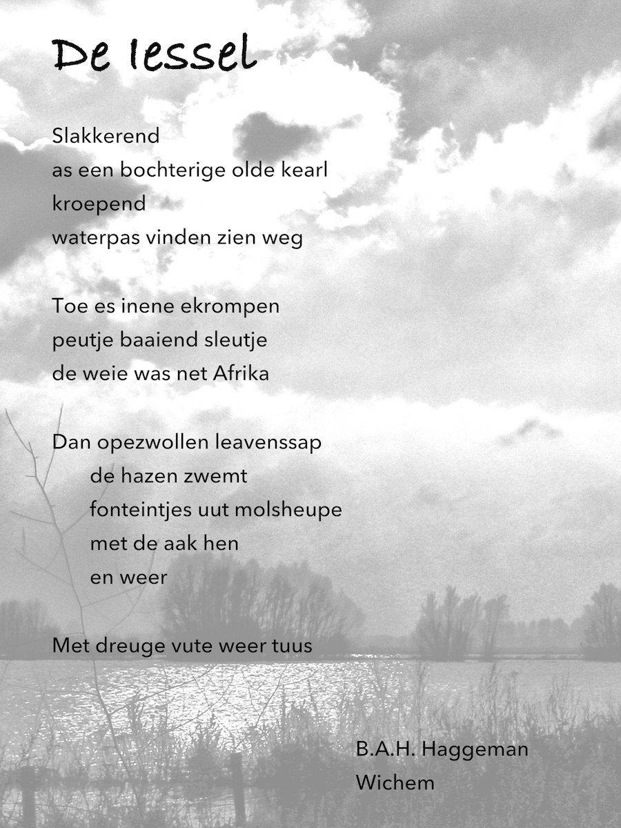 Gedicht Haggeman op golvend water.jpg